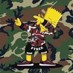 Camouflage Bart