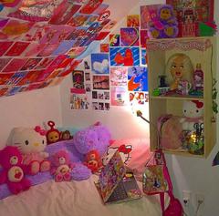 Not My Photo My Dream Room