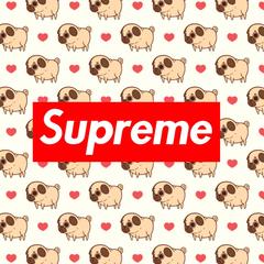 Pugs are sUpReMe