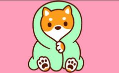 Cute Baby Corgi