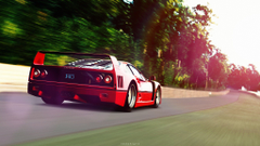 F40 In The Forest