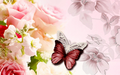 Fascinating Beautiful Wallpapers Pretty Wallpapers 1920x1200PX