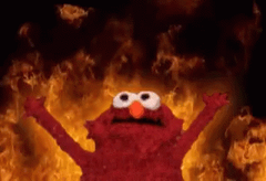 Funny Elmo GIF Wallpaper