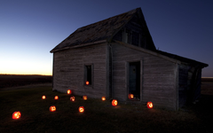 go to night of Pumpking
