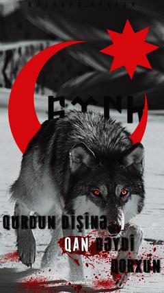 K HD Bozqurd divar ka z T rkç wallpaper Qurdun di in qan d ydi qorxun