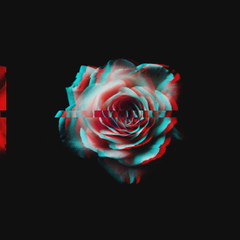 Glitchy Rose