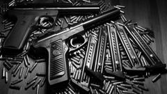 Ruger Gun Bullets HD Wallpapers