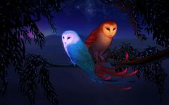 Two Owls Fantasy